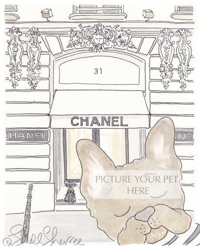 pet portrait french bulldog chanel paris by shell sherree