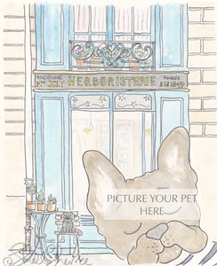pet portrait shellsherree Paris herboristerie French bulldog