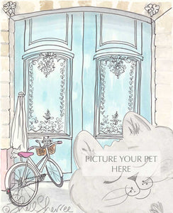 pet portrait cat shellsherree Paris aqua doors and bicycle kitty