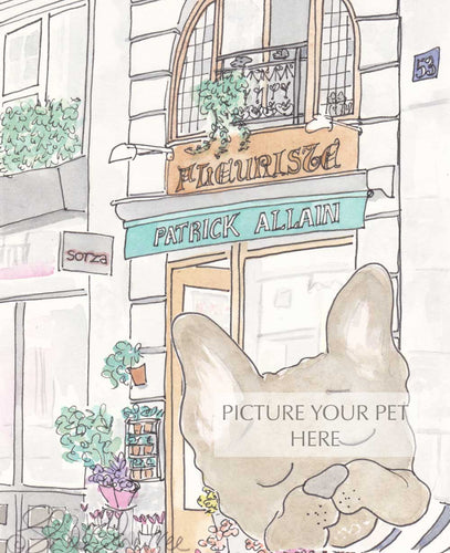 pet portrait french bulldog paris florist shell sherree