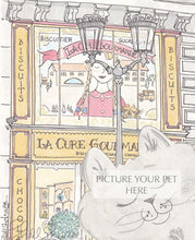 pet portrait cat shellsherree Paris sweet shop
