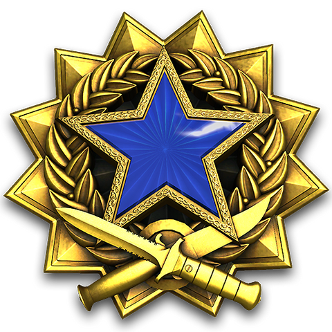 LEVEL 3 ALLOY SERVICE MEDAL