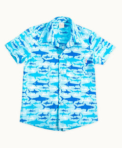 Sharks Cotton Shirt (Sizes 2-6)
