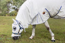 Show Ring Set Generous Neck Length Hooded Cotton Combo Horse Rug