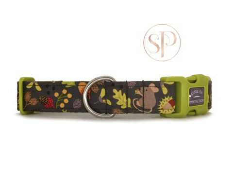 Autumn Harvest Collar