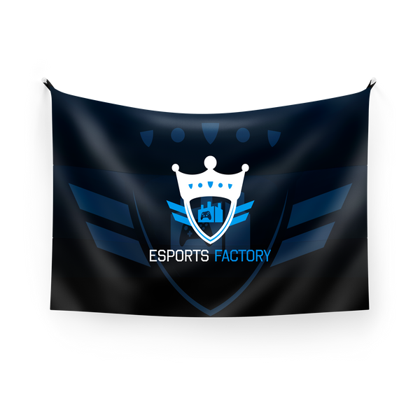 "eSportsFactory Flag ""Clean"" (2018)"