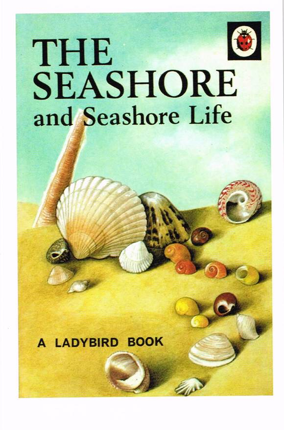 LB 06 - The Seashore and Seashore Life