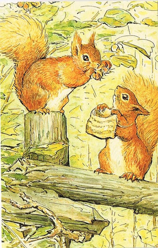 BP 55 - The Tale of Squirrel Nutkin, 1903