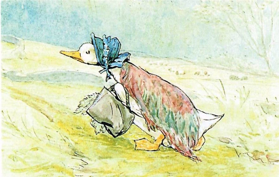 BP 59 - The Tale of Jemima Puddle-Duck, 1908