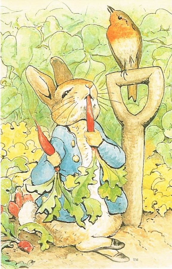 BP 06 - The Tale of Peter Rabbit, 1902