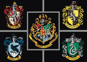 HP 11 - Hogwarts Houses