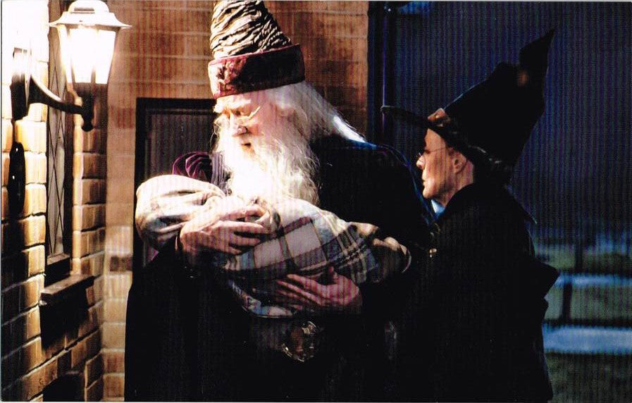 HP 13 - Harry Potter, Professor Albus Dumbledore, Professor Minerva McGonagall