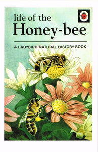 LB 95 - Life of the Honeybee