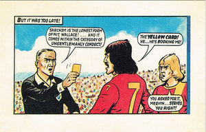 RR 25 - Comic Strip from 12th February 1977