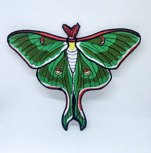 Luna Moth Actias Cute Green insect Iron on Sew on Embroidered Patch