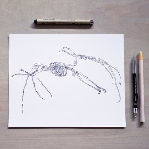 'Swift' Print - Inktober 2018 Drawing