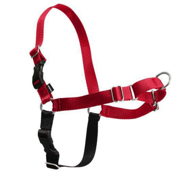 PetSafe Easy Walk Dog Harness - Cleaner Tails