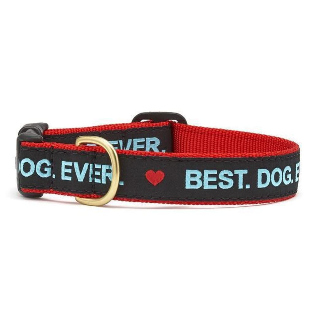 Up Country Best Dog Ever Dog Collar - Cleaner Tails