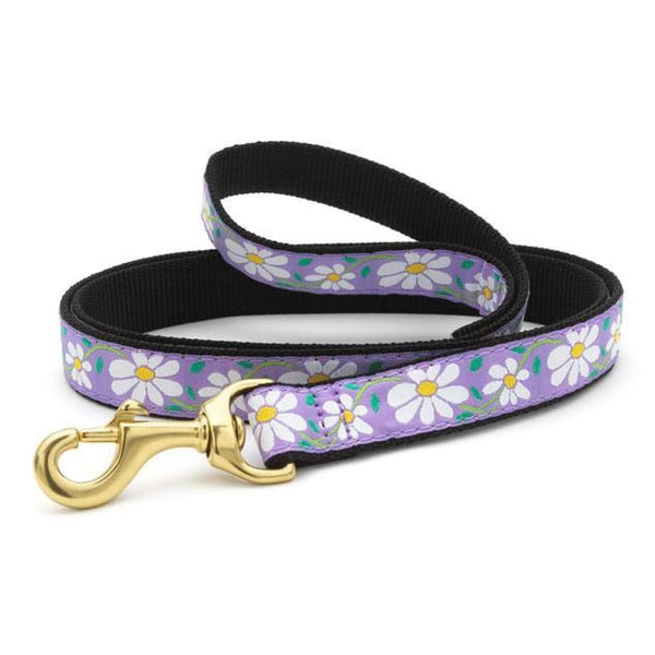 Up Country Daisy Dog Leash, 6-ft - Cleaner Tails