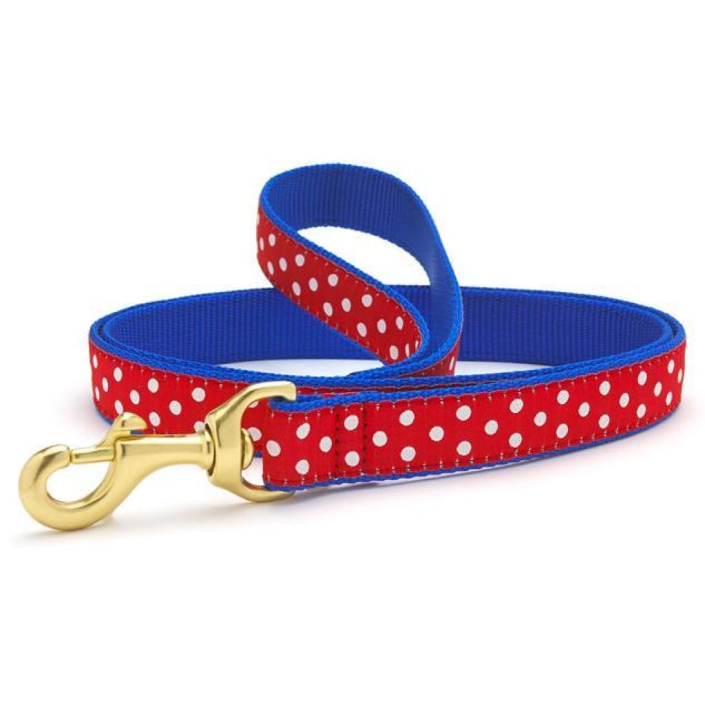 Up Country Swiss Dot Dog Leash, 6-ft - Cleaner Tails