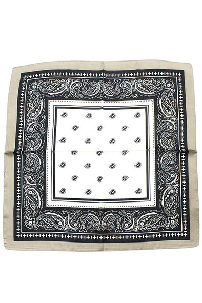 The Paisley Scarf