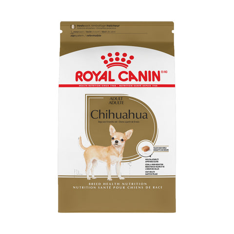 Chihuahua Adult 28
