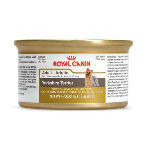 Royal Canin Yorkshire Adult Wet Loaf Lata