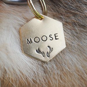 pet id tag, hand stamped dog tag, gold dog tag, custom cat tag, antlers dog tag