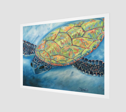 Journey Turtle Fine Art print - Museum Quality