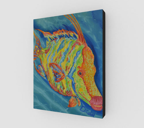 Wild Hogfish Print on Canvas