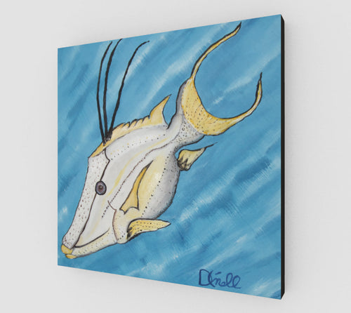 Flash the Hogfish on canvas