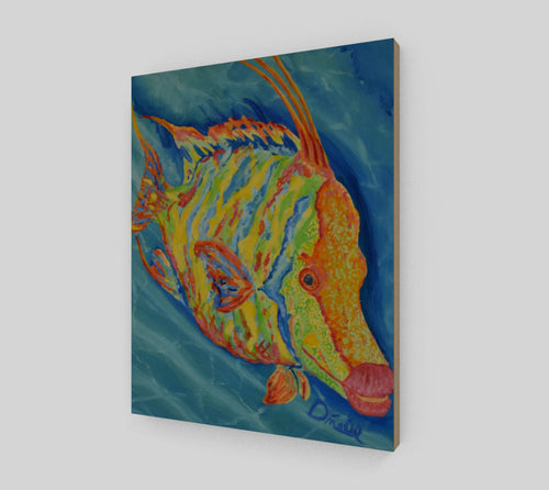 Wild Hogfish Print on Wood