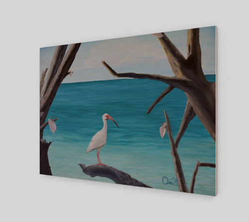 Ibis at the Pass Print on Wood