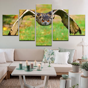 Owl In Flight 5 Panel Canvas Print Wall Art