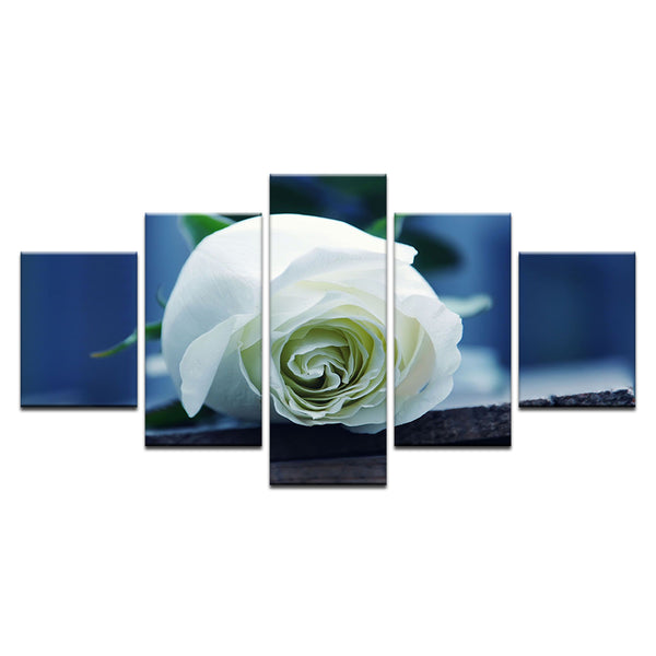 White Rose 5 Panel Canvas Print Wall Art
