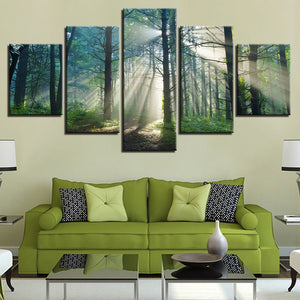 Sunlight Through The Mist In The Forest 5 Panel Canvas Print Wall Art Canvas Print Got It Here