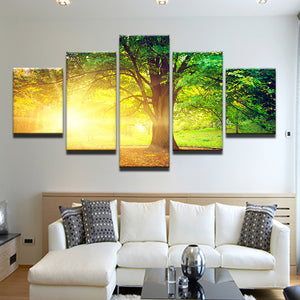 Sunrise Through The Trees 5 Panel Canvas Print Wall Art