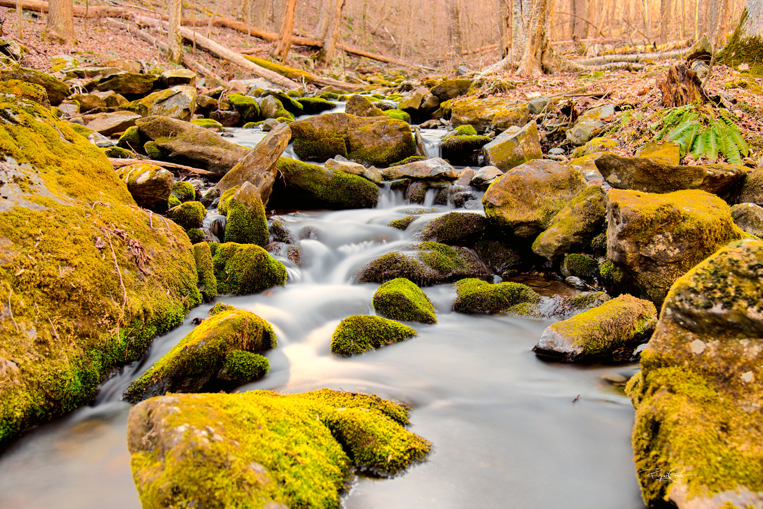 Winter Brook (Shenandoah National Park, VA)