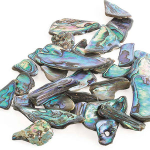 50g Paua Shell Pieces
