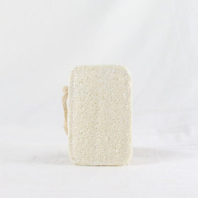 Dish Sponge Set of 4