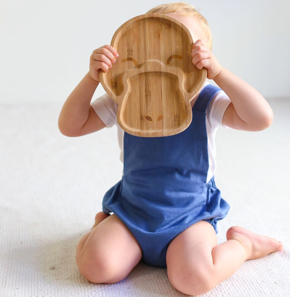 Adorable 100% Bamboo plates by Emondo Kids.