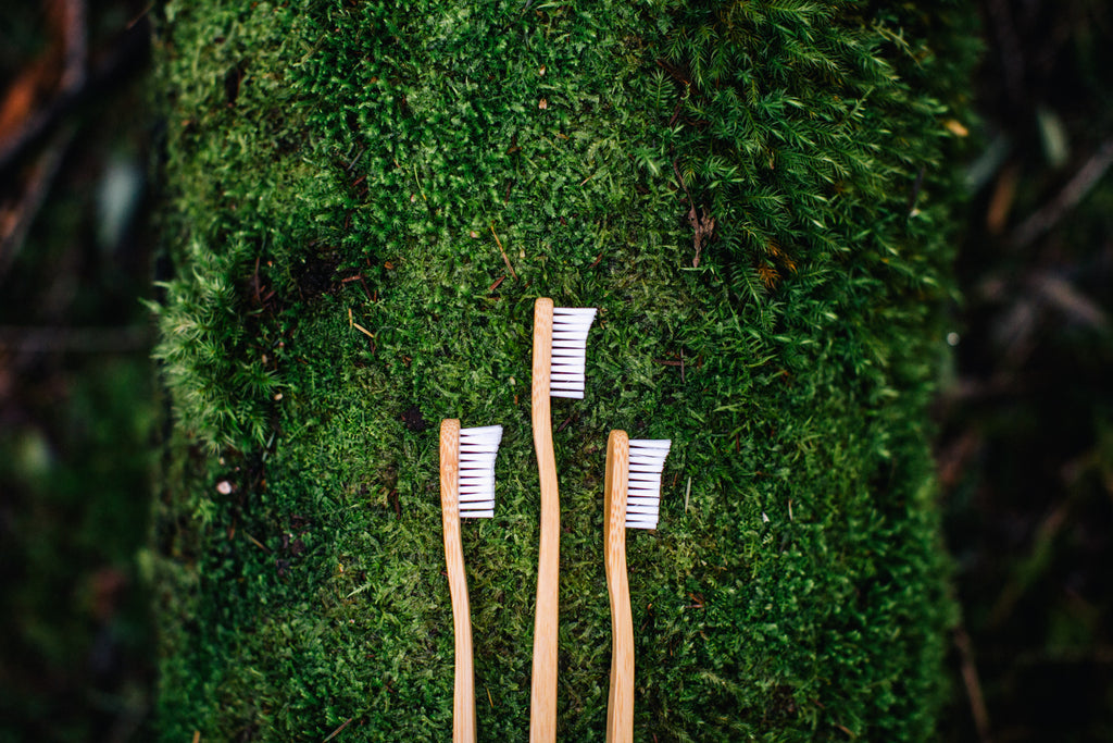 Bamboo Eco Toothbrush buy at Thistle & Roo