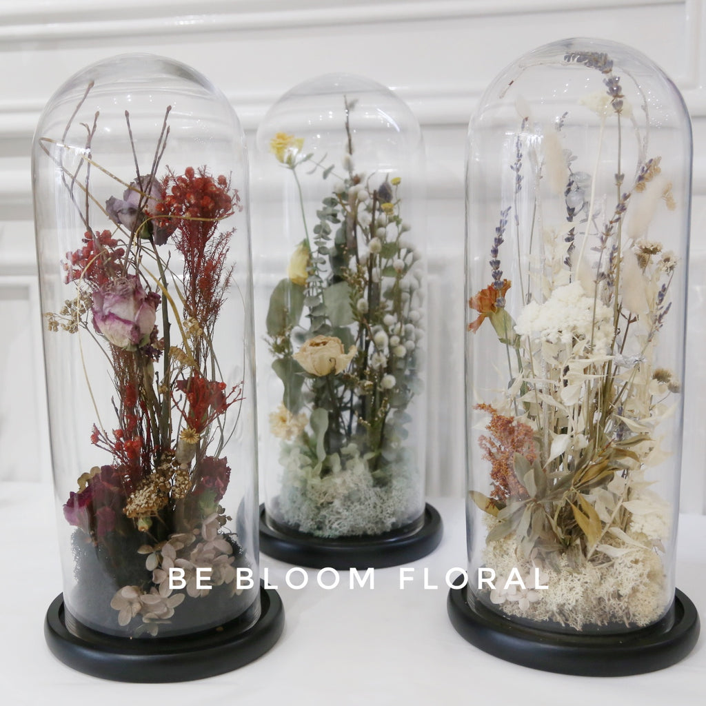 Dried Flower in a Cloche
