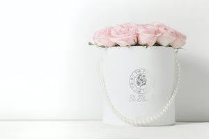 """HUG ME"" - Fresh Ecuadorian Rose Bucket"