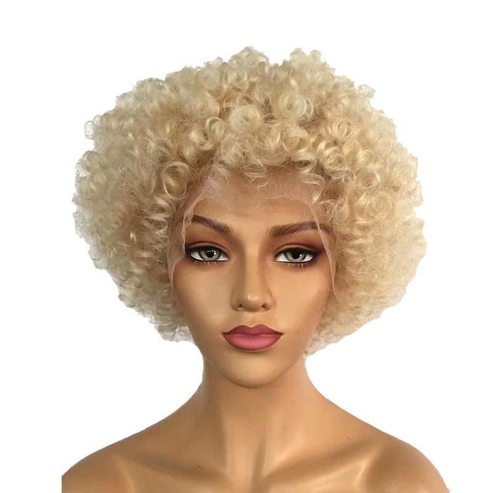 613 Color Afro Wig Human Hair