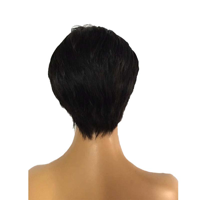 brazilian human hair lace wig pixie cut