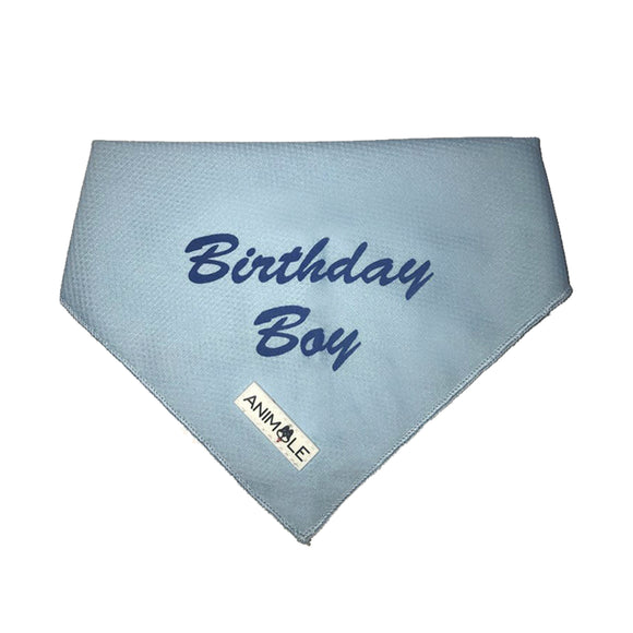 Birthday Boy - Bandana