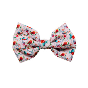 The Bird Of Paradise - Bow Tie