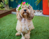 Bindi - Flower Head Crown