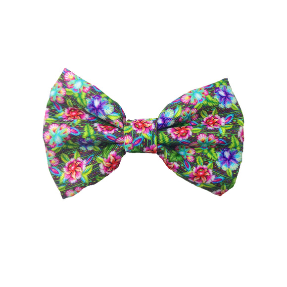 Flossy - Bow Tie